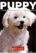 Foto de Comidas para perros