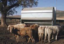 Foto de Equipos para el bienestar bovino