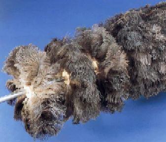 Foto de Cepillos cilíndricos de pluma de avestruz