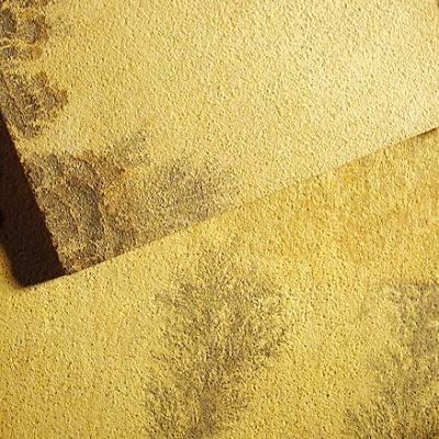 Fotografia de Areniscas de color ocre/groc/daurat