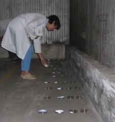 Foto de Test de contaminación ambiental