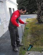 Foto de Tratamientos contra las termitas