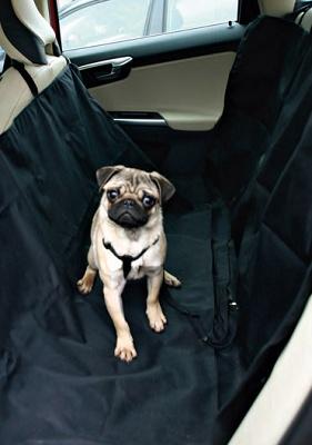Foto de Mantas de protección para el vehículo para mascotas