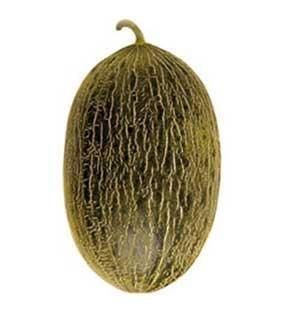 Foto de Melones piel de sapo