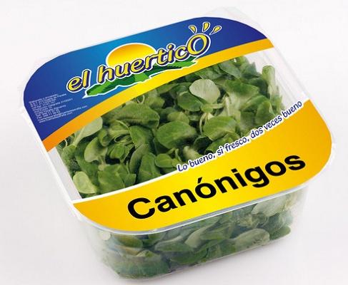 Foto de Canónigos