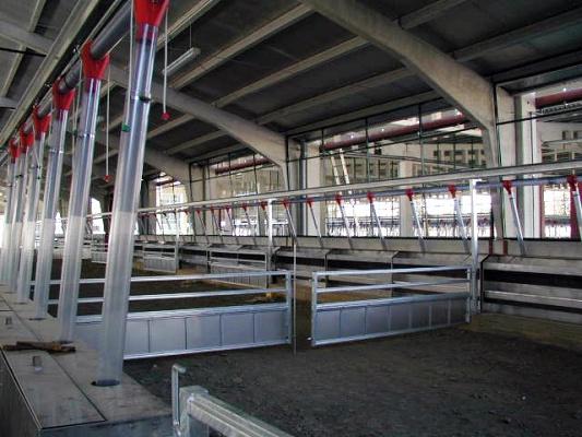 Foto de Alojamientos metálicos para ovino