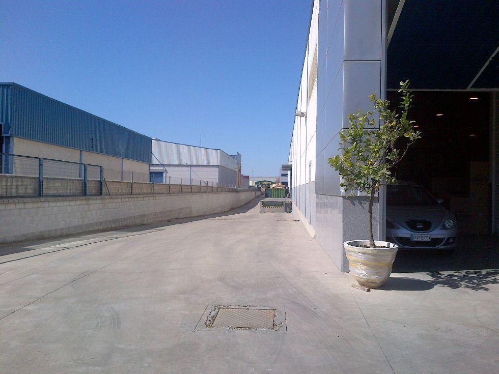 Fotografía de Diafana Nave Representativa con parcela, oficinas y muelle de carga lateral