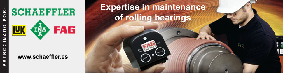 Espertise in maintenance of rolling bearings