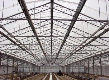 Invernaderos greenhouse diciembre 2009 - Cubierta de cristal ...