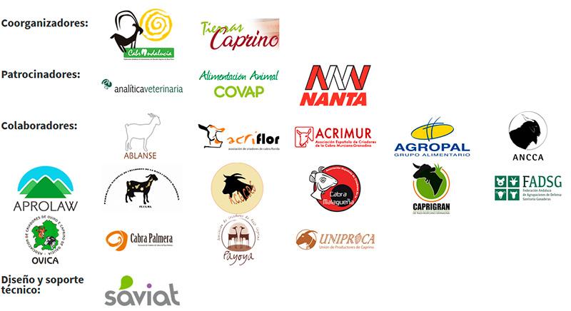Patrocinadores y empresas colaboradoras