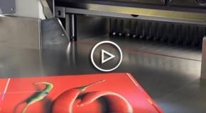 Vídeo Guillotinas hidráulicas Mohr