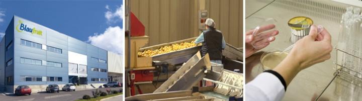 Blaufruit (Farbos 2008, S.L.)