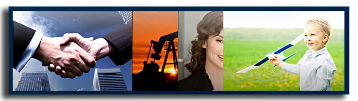 Primavera Business Software Solutions