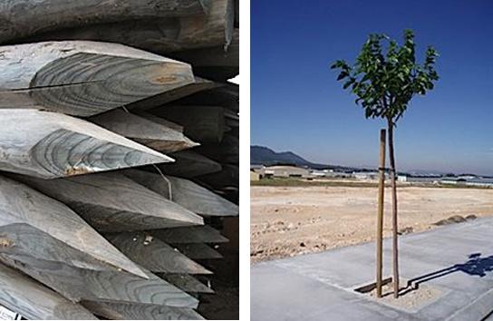 Foto de Estacas de madera