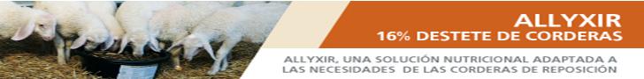Alltech: Allyxir 16% de destete de corderas