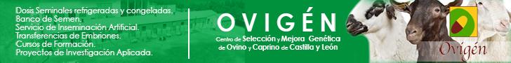 Ovigén