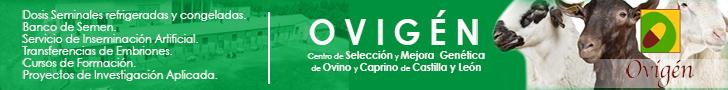 Ovigén - Centro de selección y mejora genética de Ovino y Caprino de Castilla y León